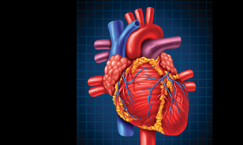 Preoperative Cardiac Evaluation And Management Of Patients